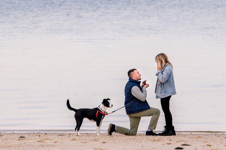 Hamptons Marriage Proposal